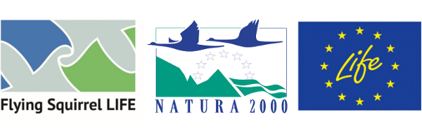 Logot Flying Squirrel life, Natura 2000, Life