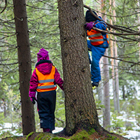 Rain or shine – kids enjoy the forest